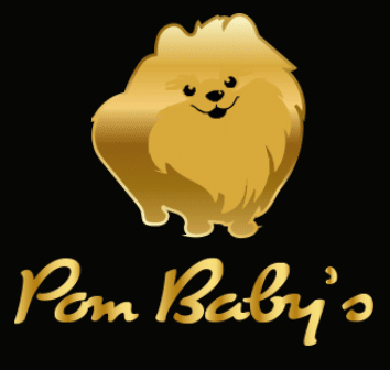 https://www.swopmedia.nl/project/pom-babys-website/